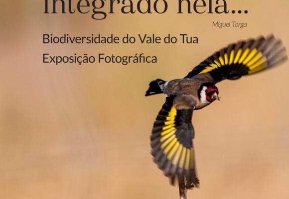 exposicao_fotografica_biodiversidade_vale_do_tua